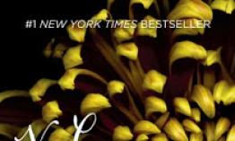 Resena Flores En El Atico Dollanganger 1 De V C Andrews
