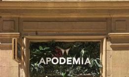 e5c7a07fde51 APODEMIA abre su primera tienda en Bilbao