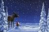 Celebra la Navidad en Finlandia