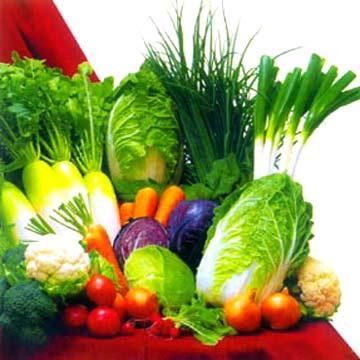 Vegetales, Aliados de la Salud