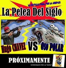 hugo chavez vs oso polar