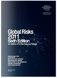 global risk reports 2011