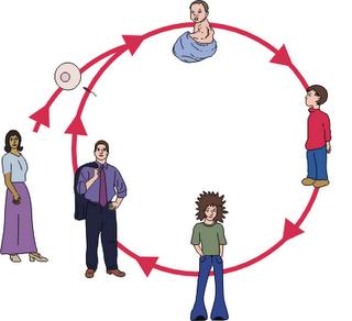 la salud como proceso fundamental: