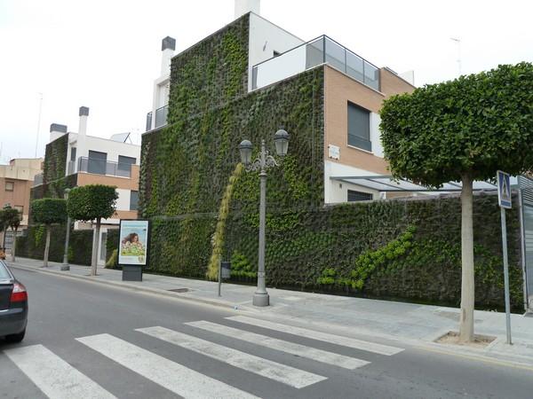 Jard n vertical en paterna for Jardines verticales panama