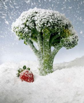 Métodos de conservación de alimentos (resumido)