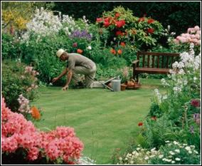 Dise o de jardines peque os for Ornamentacion de jardines