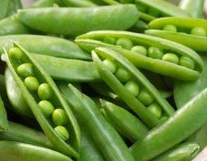 Legumbres un alimento para el verano - Como cocinar judias verdes frescas ...
