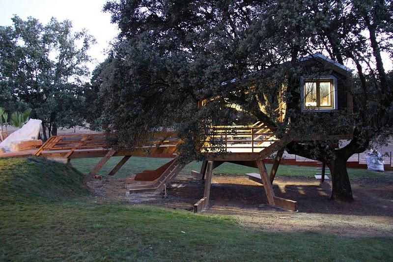 La casa en el rbol enraizada rooted treehouse - Casas en el arbol ...