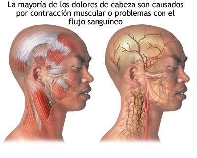 La incomodidad en la parte inferior del vientre duele los riñones