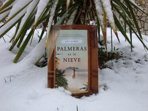 Palmeras en la nieve luz gabas resumen