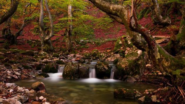 5 paisajes oto ales en espa a imprescindibles - Imagenes paisajes otonales ...