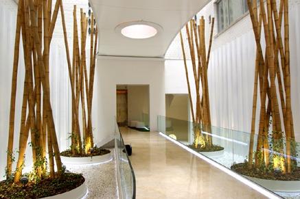 Especial decoraci n y paisajismo en oficinas y edificios for Accesorios decorativos para oficina