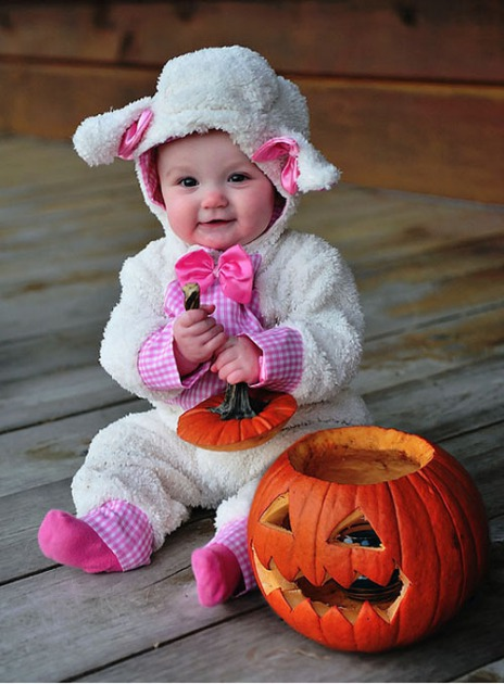 Disfraces para bebes halloween 2015 - Disfraces para bebes de un ano ...