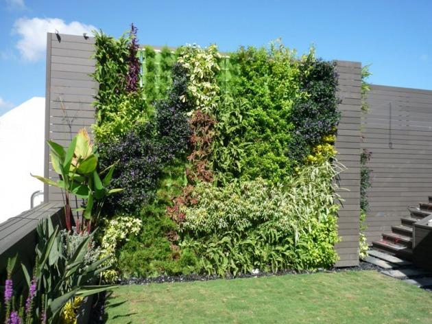Muro verde la nueva revoluci n urbana for Muro de separacion terraza