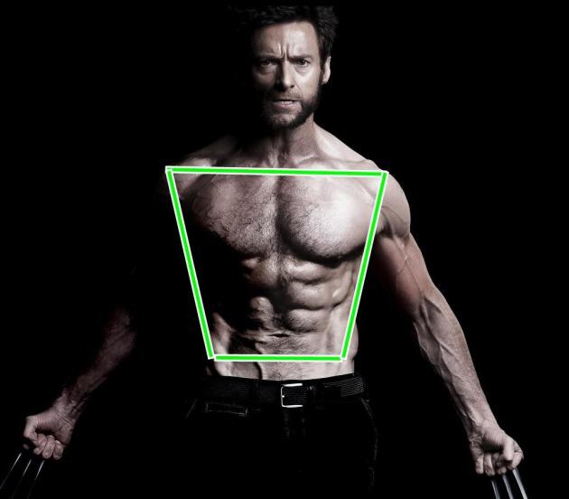 2bcc4f9a75 Tipos de cuerpo en mujeres y hombres. ¿Cual es el tuyo?