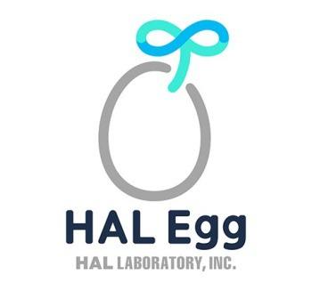 Imagen del juego HAL Laboratory (Kirby, BoxBoy!) establece HAL Egg, su marca de juegos para móviles