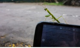 Malware Roaming Mantis evoluciona para atacar a usuarios de iOS, Android y PC